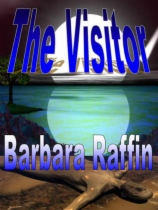 The Visitor by Barbara Raffin book cover