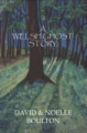 A Welsh Ghost Story book cover