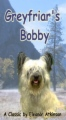 Greyfriars Bobby book cover